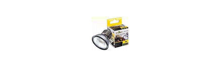 Oświetlenie i grzałki do terrarium