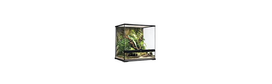 Terraria szklane