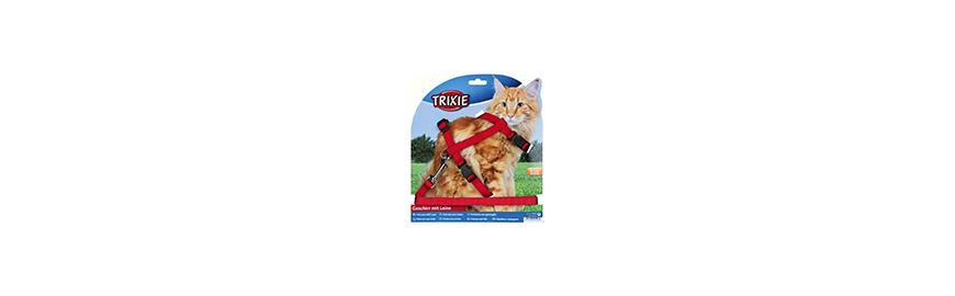 Smycze i szelki dla kota