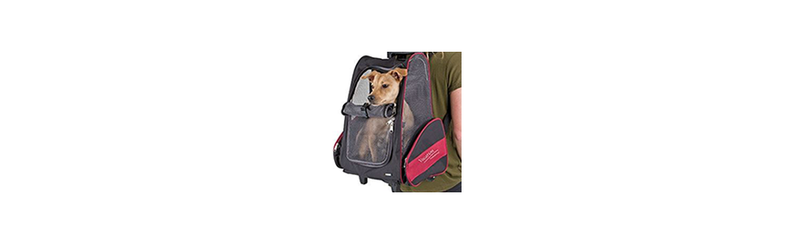 Sprzęt podróżny dla psa