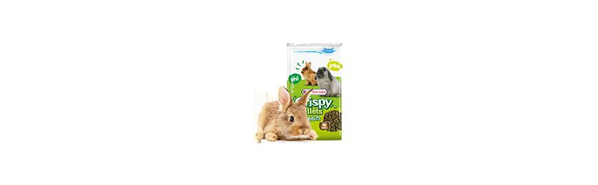 Karmy dla królika