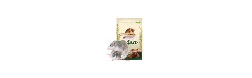 Karmy dla myszy i szczura