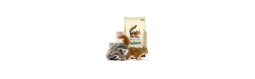 Karmy dla wiewiórki i jeża